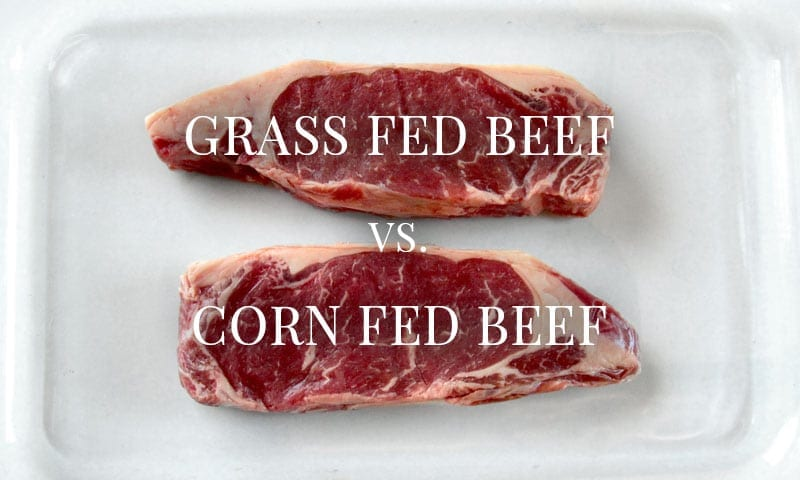 Grass Fed Beef vs. Corn Fed Beef